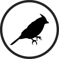 Coasters Birds file cdr and dxf free vector download for printers or laser engraving machines