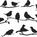 bird collection on tree branches file cdr and dxf free vector download for print or laser engraving machines