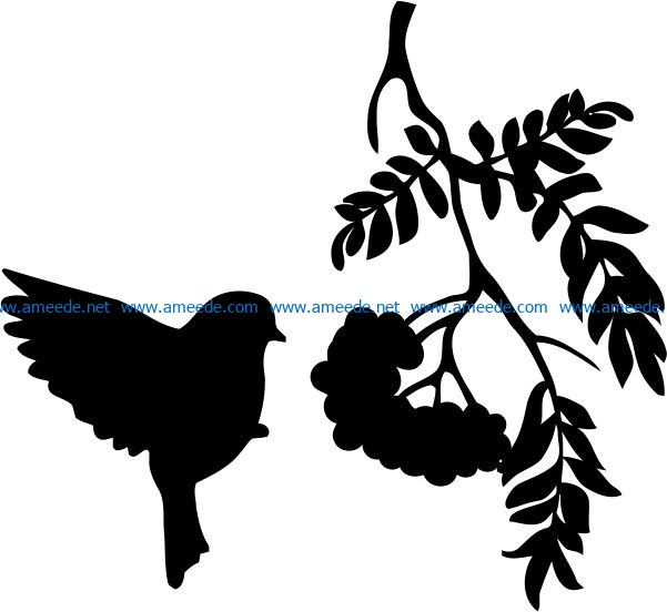 Birds eat fruit file cdr and dxf free vector download for print or laser engraving machines