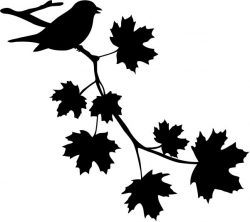Birds perched on maple branches file cdr and dxf free vector download for print or laser engraving machines