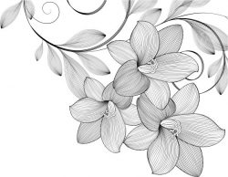 Bunch of beautiful flowers file cdr and dxf free vector download for print or laser engraving machines