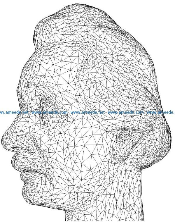 3D illusion led lamp Einstein kicked the head free vector download for laser engraving machines
