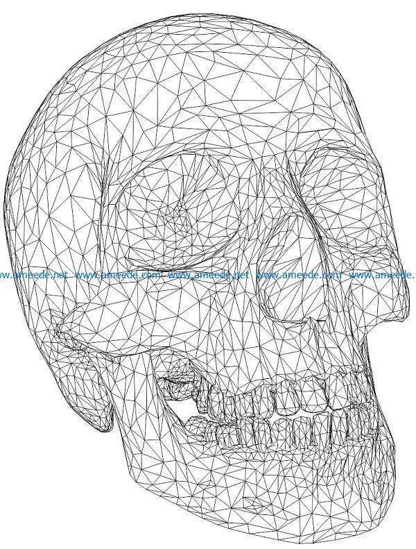 3D illusion led lamp human head bone free vector download for laser engraving machines