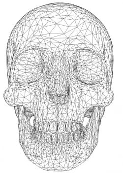 3D illusion led lamp skullcap free vector download for laser engraving machines