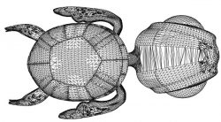 3D illusion led lamp turtle free vector download for laser engraving machines