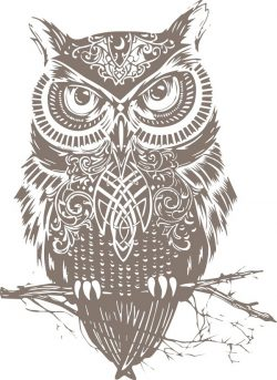 Owl training file cdr and dxf free vector download for print or laser engraving machines