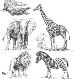 africa animals set file cdr and dxf free vector download for print or laser engraving machines