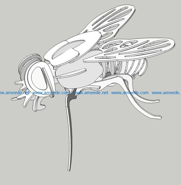 fly file cdr and dxf free vector download for Laser cut