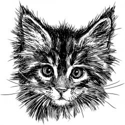 handdrawn cat file cdr and dxf free vector download for print or laser engraving machines