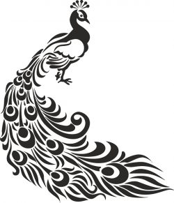 peacock stencil file cdr and dxf free vector download for print or laser engraving machines