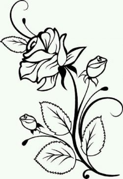 rose file cdr and dxf free vector download for print or laser engraving machines