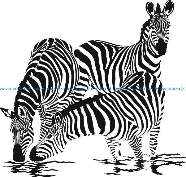 Zebra family drink water file cdr and dxf free vector download for print or laser engraving machines