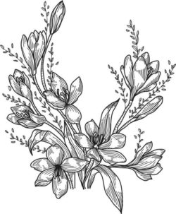 peony flower file cdr and dxf free vector download for print or laser engraving machines