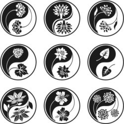 yin and yang flower file cdr and dxf free vector download for laser engraving machines