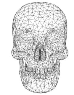 3D illusion led lamp human skull free vector download for laser engraving machines