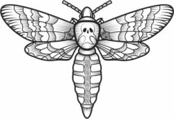 Ghost butterfly file cdr and dxf free vector download for laser engraving machines