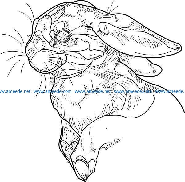 Hare file cdr and dxf free vector download for laser engraving machines