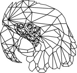 Parrot 3d murals file cdr and dxf free vector download for Laser cut Plasma