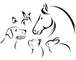 Friendship of animals file cdr and dxf free vector download for laser engraving machines
