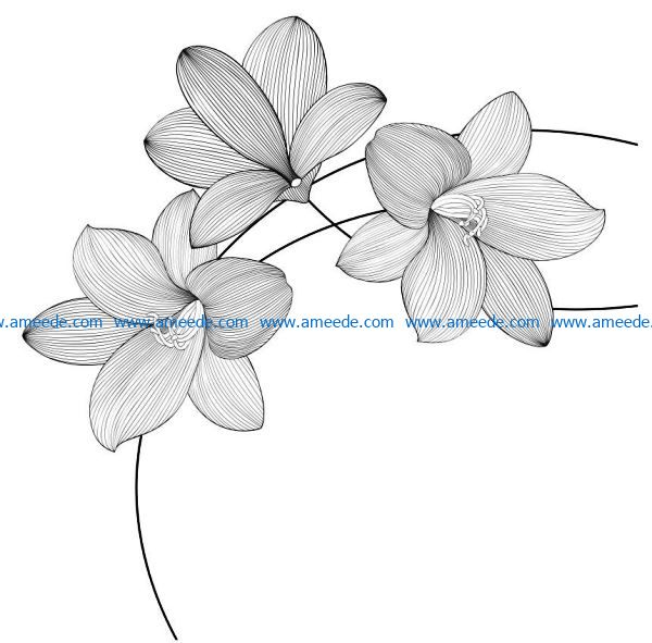 Orchid file cdr and dxf free vector download for laser engraving machines