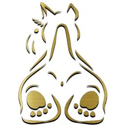 Terrier file cdr and dxf free vector download for laser engraving machines