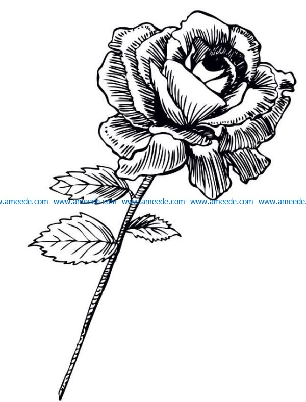 Rose file cdr and dxf free vector download for laser engraving machines