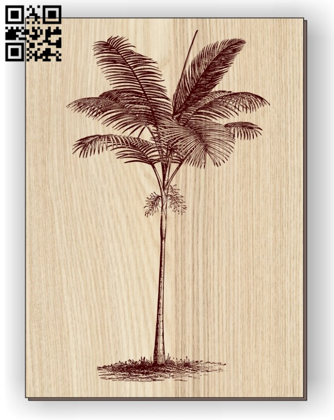 Feather palm tree E0011075 file cdr and dxf free vector download for laser engraving machines