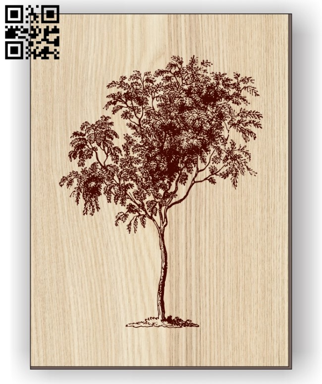 Mountain ash E0011064 file cdr and dxf free vector download for laser engraving machines