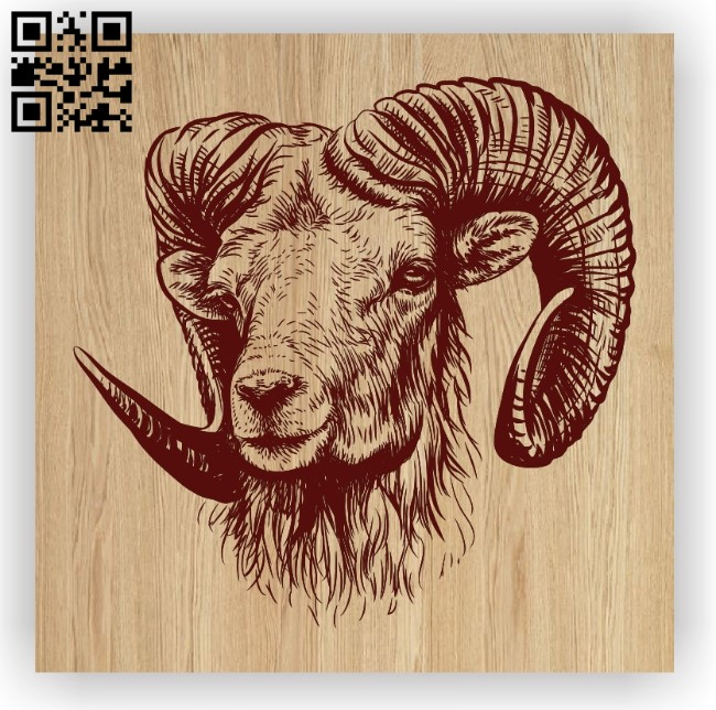 Bighorn sheep E0012414 file cdr and dxf free vector download for laser engraving machines