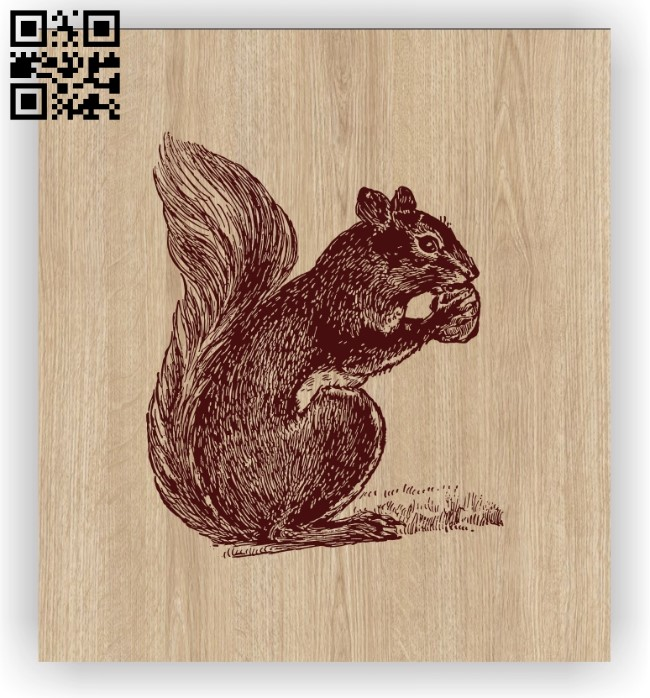 Squirrel E0012371 file cdr and dxf free vector download for laser engraving machines