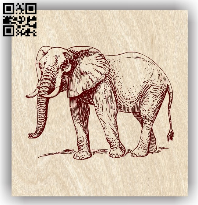 Elephant E0013722 file cdr and dxf free vector download for laser engraving machine