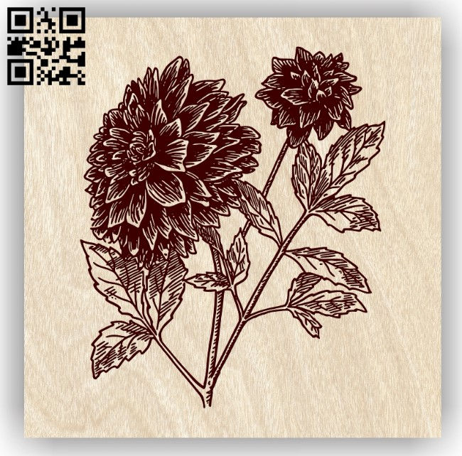Dahlia flower E0013755 file cdr and dxf free vector download for laser engraving machine