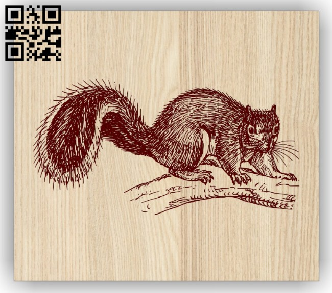 Squirrel E0014695 file cdr and dxf free vector download for laser engraving machine